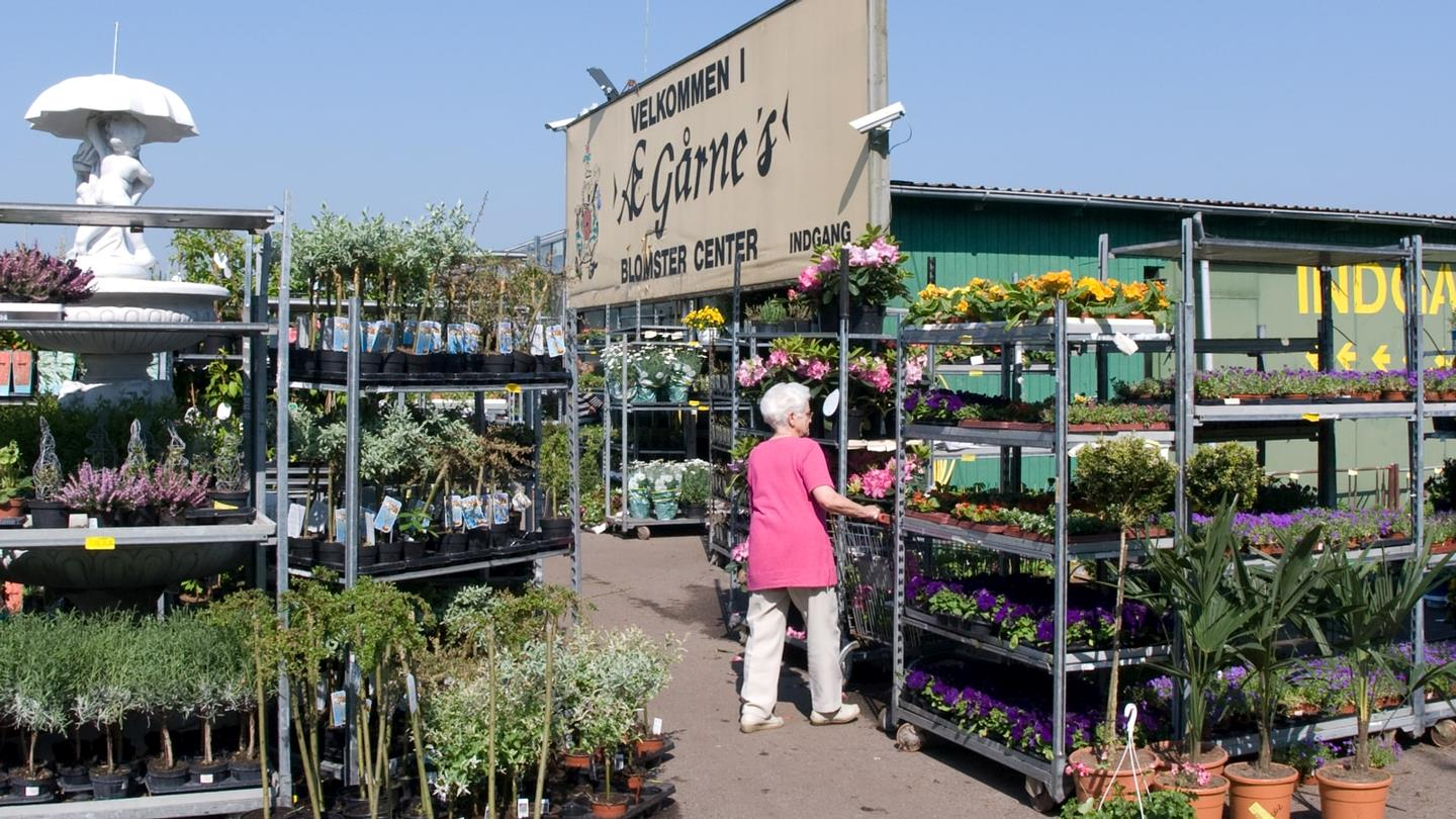 Outside Gaarrne Garden Center woman looks at plants and flowers